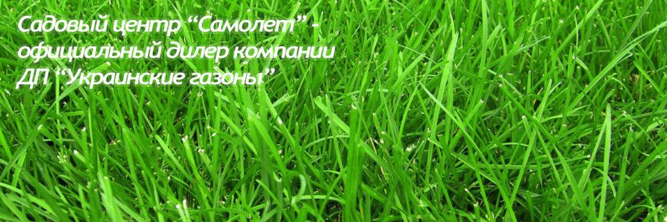 Заказав наш газон вы получите качественный и долговечный продукт